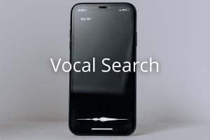 vocal search