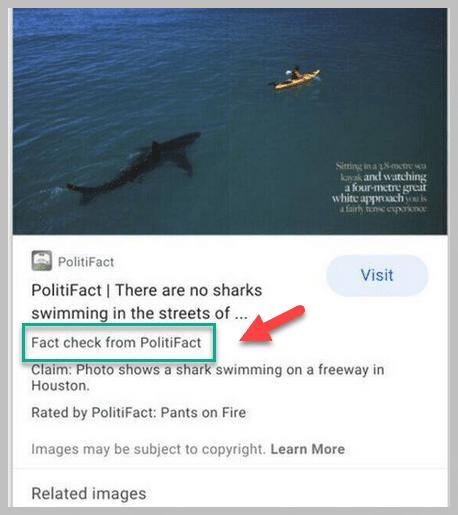 fact-check-google